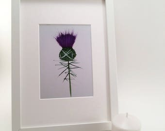 Scottish Thistle gift, Thistle print, Scottish home decor, Wedding gift, Scottish Wedding, Scottish art, Country home decor, Thistle art