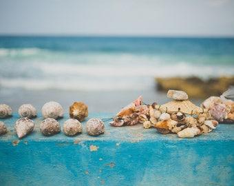 Seashells - Isla Mujeres, Mexico Print