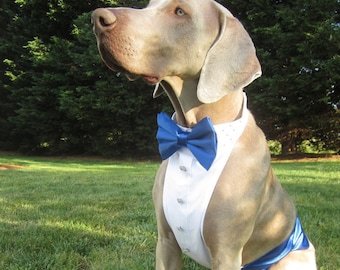 Dog Tuxedo Shirt/Wedding/Formal Attire/Christmas/New Years/Holiday