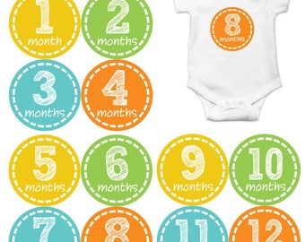 Monthly Stickers Monthly Baby Stickers Baby Month Milestone Stickers Baby Month Stickers Month to Month Bodysuit Stickers Shower Gift 173