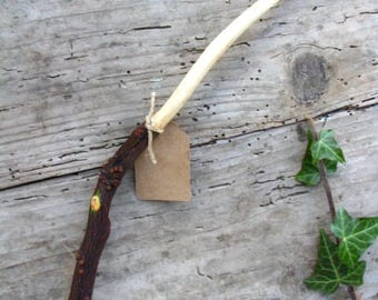 Quince wand, handmade Wood Wand, Wiccan Wand, magical tool, magic wizard witch ritual tool
