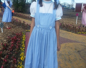 Dorothy Dress Size Girl  sizes -10   or size 12 or size14
