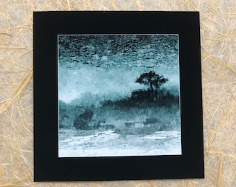 ttams - square greeting card - tree reflection in sand - blank