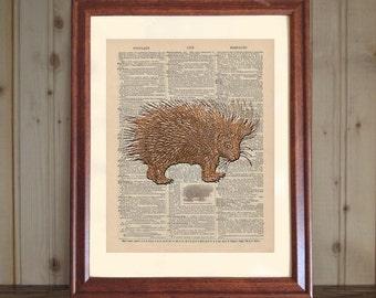 Porcupine Dictionary Print, Porcupine Print, 3D Porcupine Drawing, Porcupine Gift, Porcupine Wall Art, Wildlife Wall Art, Child's Room Decor