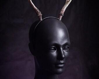Roe deer antlers replica