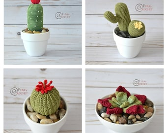 CROCHET PATTERN - SUCCULENTS Amigurumi / Cactus / Flower / Plants / Handmade  - pdf only