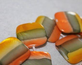 x 5 square shell bead. Dimensions: 20mm x 20mm
