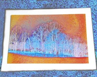 Set of Three Photo Note Cards 5x7 Winter Trees in Orange