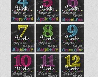 Weekly Pregnancy Chalkboard Weeks - Instant Download Print - DIGITAL - Baby Announcement - DIY