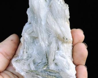 Calcite and Pyrite on Matrix (245g)