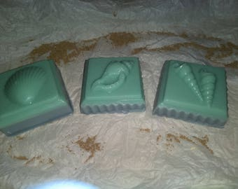 Sea shell soap
