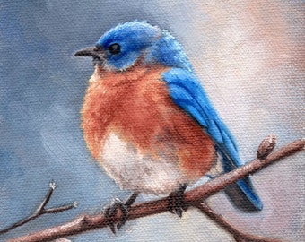 Eastern bluebird - bird art print - bird painting - Open edition print
