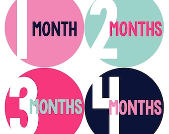 Monthly Baby Stickers Baby Month Stickers Baby Girl Month Stickers Monthly Photo Stickers Monthly Milestone Stickers 291
