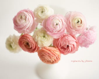 Ranunculus Heaven-Floral photography-Still life photography-Ranunculus