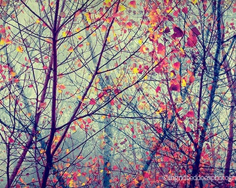 Tree photography, autumn photograph, red, yellow leaves, fog, woodlands, fine art print, surreal nature photography, home decor, wall decor
