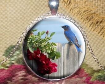 Eastern Bluebird Pendant Necklace Jewelry, Blue Bird, Bird Necklace Jewelry, Bird Photo Jewelry, Photo Gift