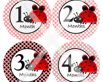 Baby Monthly Milestone Stickers – Baby Girl – Lady Bug – Baby Girl Month Baby Stickers