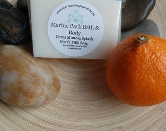 Citrus Mimosa Soap, Citrus Soap, Mimosa Soap, All Natural Soap, Mandarin Soap, Mandarin Mimosa Soap