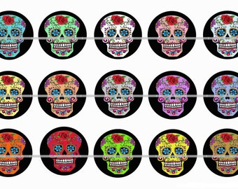 """1"""" Inch Day of the Dead Skull Pins, Flat Back Buttons or Magnets 12 Ct."""