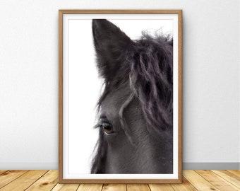 Horse Print, Horse Printable, Horse Photography, Horse Large Wall Art Printable, Horse Eye Photo, Horse Wall Art, Farm Animal Print, (W0910)