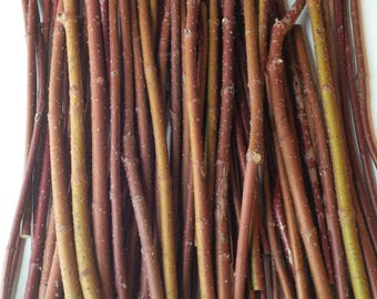 Red Dogwood Stems,Twigs,Branches,Floral,Arrangement,Wall Art,Rustic Decor,Fall,Wreath Material,Wedding Decor,Christmas,Holiday,Sticks