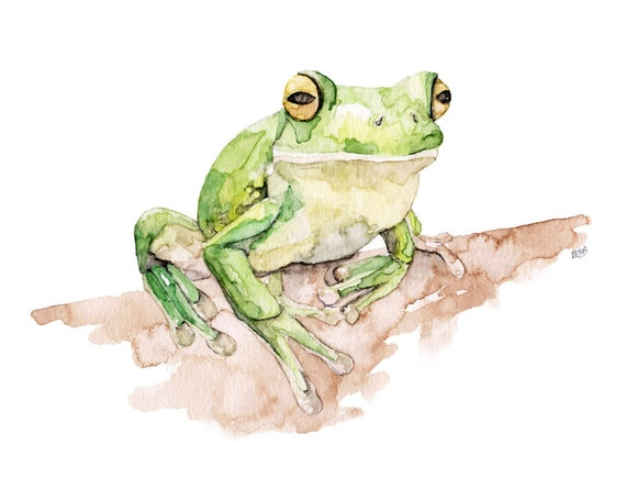 Tree Frog Painting Print From Original Watercolor Painting