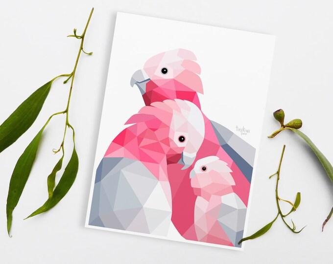 Galah cockatoo print, Galah illustration, Bird pair, Animal family art, Toddler room art, Australian birds, Art for babies, Cute animal art