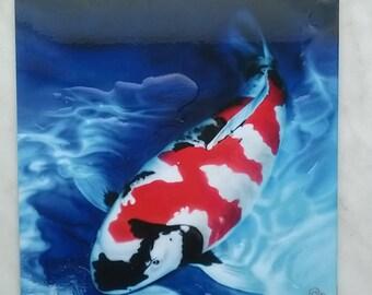 Re-M @ the painting Koi carp