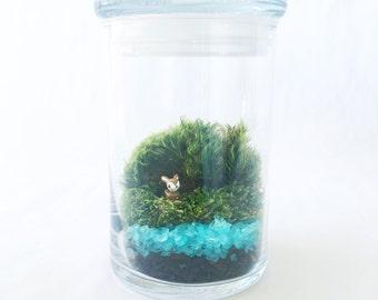You're A Deer Moss Terrarium // Tiny Fawn // Glass Terrarium // DIY Terrarium Kit