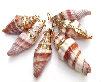 Conch Shell Bead Natural  Shells Pendant Charm Gold Dipped approximately 40 mm One Piece