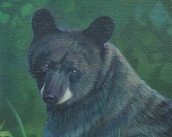 Bear paintings, Original acrylic bear paintings