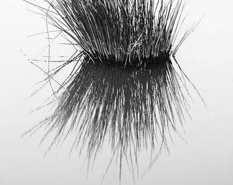 Minimalist canvas, black and white, nature canvas, minimalist, nature photography, fine art photography, oversized, monochrome, reflection