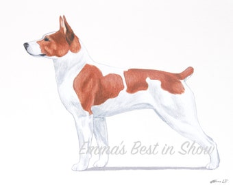 Rat Terrier Dog - Archival Fine Art Print - AKC Best in Show Champion - Breed Standard - Terrier Group - Original Art Print