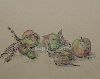 Apples, fruit, fruit, still life, apple, fruit, still-life, fine-print 20x30 cm, poster 30x40 cm, fine-print 29, 7x42 cm
