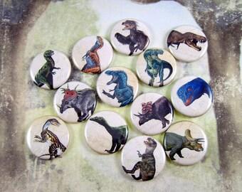 Dinosaur Magnets, Dinosaur Pins, Dinosaur Flatbacks, Dino Party Favors, Dino Flatbacks, Dino Teaching Aid, 12 Ct. Set C