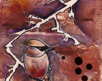 Original Painting Bird - Le jaseur