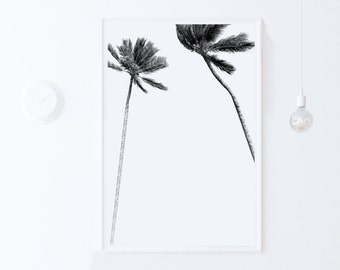 Minimalist Digital PRINT DOWNLOAD modern home decor, Tropical Art, Palm Tree PRINTABLE Poster Black and White Print Palm Art Palm Tree Print