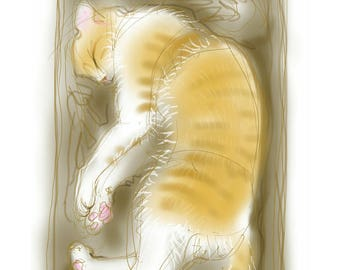 greetings card: 'Sergeant Stripes' - ginger and white cat sleeping in a cardboard box,art card, blank inside