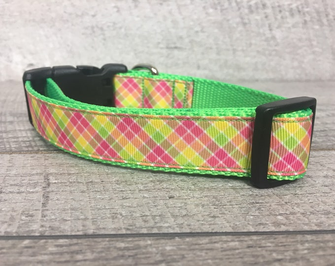 "The Gimlet | Designer 1"" Width Dog Collar 