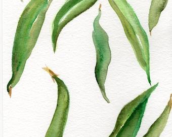 Haricots verts aquarelles peintures originales, légumes aquarelles décor de cuisine. Art alimentaire, 5 x 7 peinture aquarelle originale de haricots verts