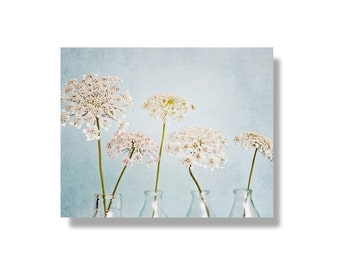 Queen Annes Lace photo canvas art, pale blue, flower wall art, flower photo canvas, nature photography, shabby chic decor - Itty Bitty White