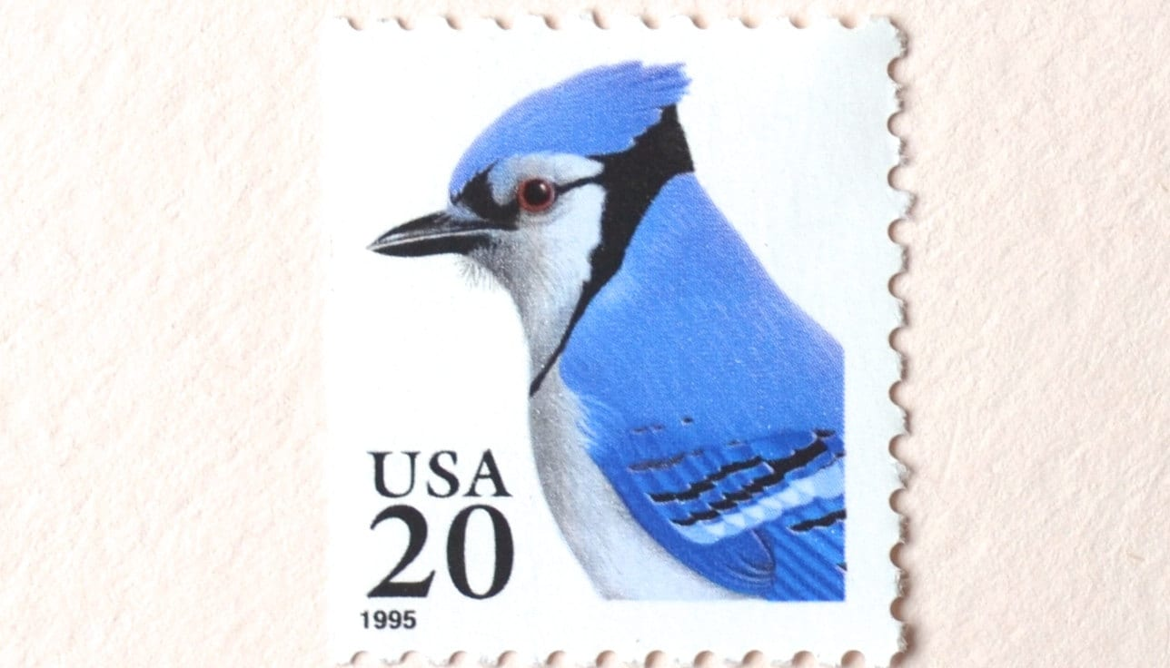 10 Unused Blue Jay Stamps 20 cent Vintage Blue Bird Postage Stamps ...