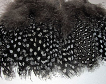 Guinea Fowl Feathers - Natural