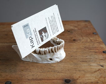 Business Card Holder for desk Human Skull Jaw Bone Replica Real Size Realistic Resin Cast jawbone Anatomy Gift for Doctor Dentist Office