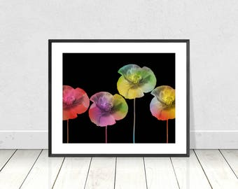 Bright Rainbow Color Poppies on Black Background  -  Digital Print - Instant Download - Flower Wall Art - Flower Art - Wall Art - A3 Print