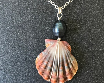 Rare Blue and Red Striped Hawaiian Sunrise Shell Necklace with Freshwater Pearl