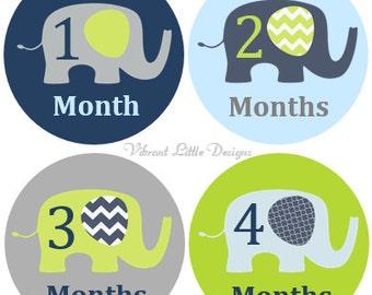 Monthly Baby Stickers Boy, Milestone Stickers, Month Stickers, Baby Month Stickers, Baby Stickers, Elephant, Chevron #54