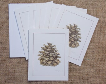 """Pine cone, blank botanical note cards with envelopes,  4 1/4"""" x 5 1/2"""", package of 6, all one design"""