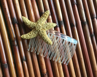 Starfish Hair Comb ~ Tropical Pinup Hair Accessory