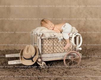 Newborn Photography TWO Cowboy Western Digital Backdrops